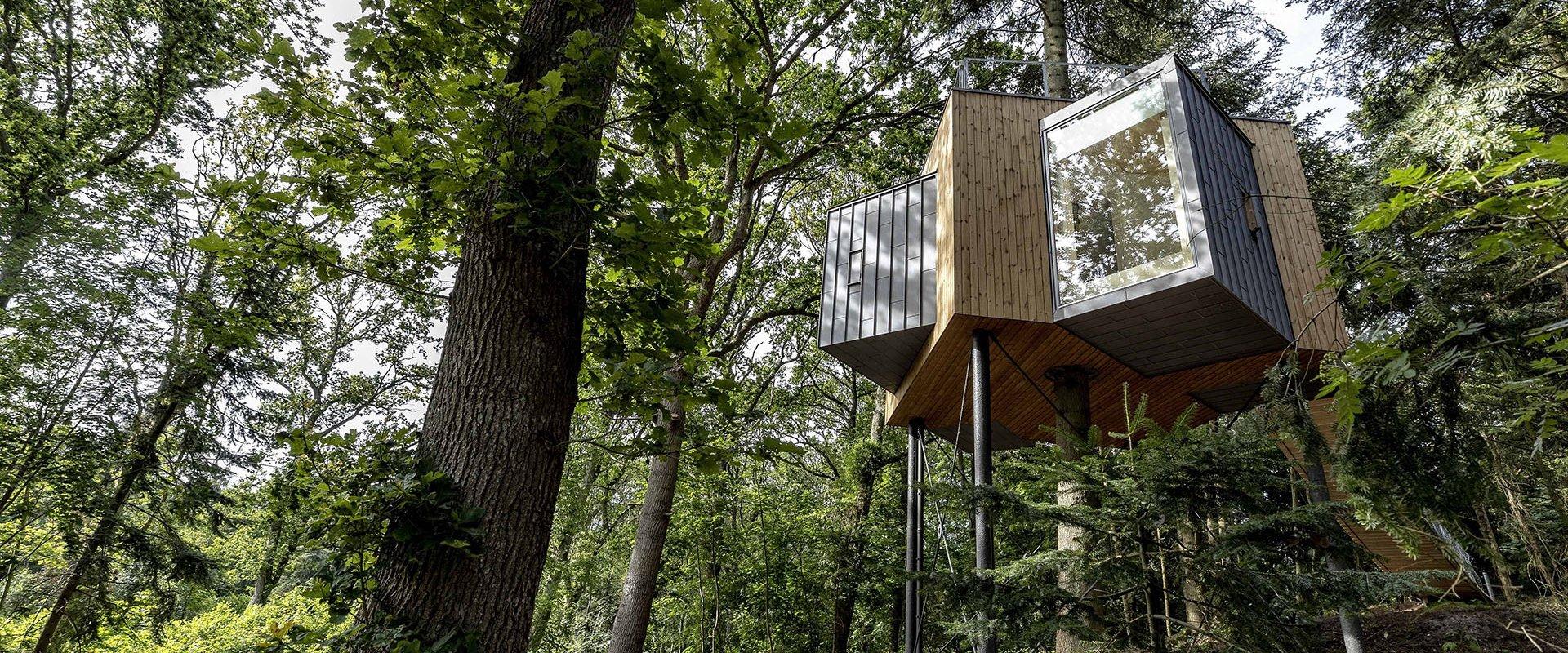 Skruefundamenter skåner trærødder under trætophotel